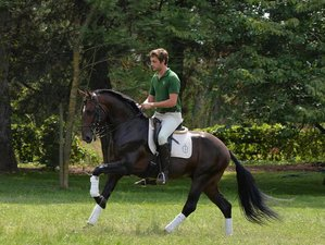 4 Days Weekend Horse Riding Holiday in Santo Andre Lusitanos, Portugal