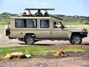13 Days Family-Friendly Wildlife Safari in Kenya and Diani Beach Holiday