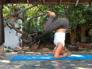 6 Days Meditation and Yoga Retreat in Auroville, India