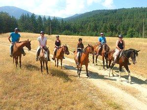 5 Day Wild Rafting Adventure and Horse Riding Holiday in Rila National Park, Balkan Peninsula