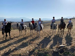 8 Day Exceptional Horse Riding Holiday in the Sierra de las Nieves Natural Park, Andalusia