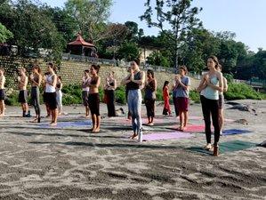 24 Day 200-Hour Multi-Style Yoga Teacher Training Course in Rishikesh