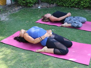 50 Hour Yoga Teachers Training Course (TTC) In Rishikesh, India