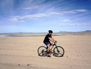 14 Days Local Immersion and Bike Tour in Mongolia