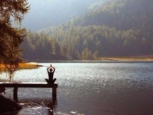 3 Day Serene and Silent Retreat for Health and Wellness in Julian, California