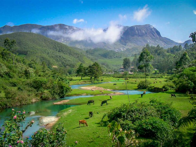13 Days 100-Hour Expedition and Spiritual Adventure Yoga Teacher Training in Kerala, India
