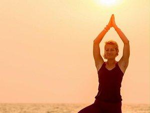 8 Tage Weihnachten, Reiki und Yoga Urlaub in Sri Lanka