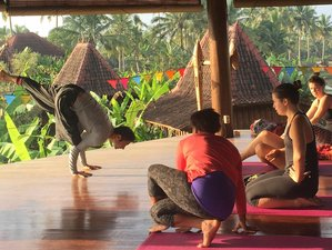 14 Days 200-Hour Yoga Teacher Training in Bali, Indonesia