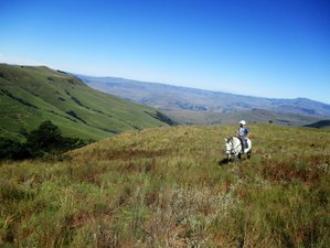 5 Days South African Countryside Horse Riding Holiday in KwaZulu-Natal, South Africa