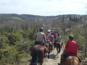 7 Day The City of Palio Tour and Horse Riding Holiday in Siena, Italy