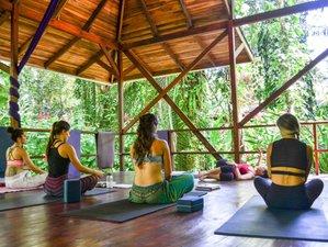 26 Tage 300-Stunden Yogalehrer Ausbildung in Playa Chiquita