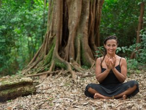 7 Days Ayurvedic Food and Yoga Retreat in Bali