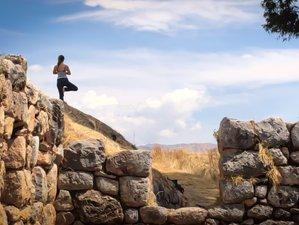 6 week Vinyasa and Restorative 200-Hour Pachānanda Virtual Yoga Teacher Training
