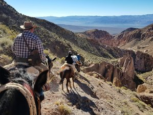 4 Day Exciting Getaway and Horse Trail Riding Hidden in The High Andes Mendoza
