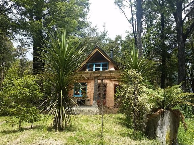 6 Days Restorative and Yoga Nidra Retreat in New Zealand