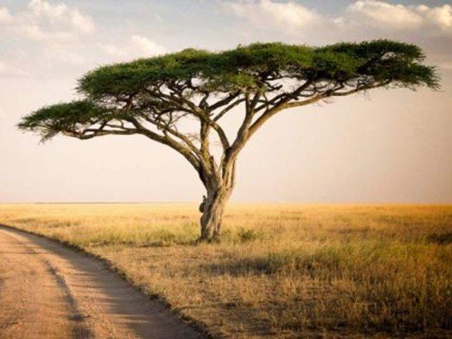 5 Days Camping Safari in Tanzania
