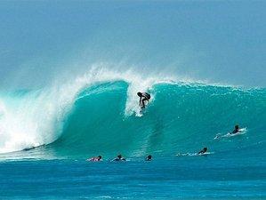 8 Days Royal Surf Camp in Galapagos Island, Ecuador