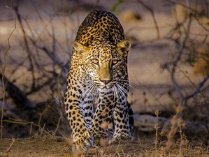 5 Day Photography and Wildlife Tour in Sri Lanka