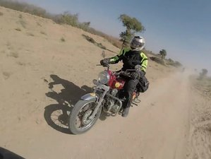 13 Days Vacaciones Guided Motorcycle Tour in Rajasthan, India