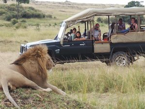3 Days Masai Mara Safari in Kenya by Air with Horse Riding Activity Included