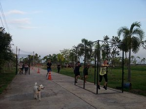 7 Days Fitness and Weightloss Bootcamp in Chiang Mai, Thailand