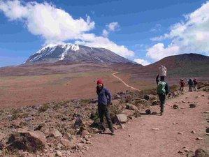 9 Days Machame Route Kilimanjaro Safari in Tanzania