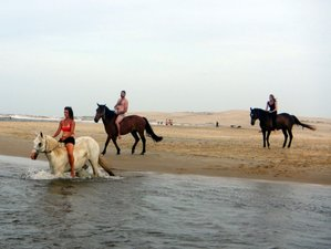 7 Day Rocha's Expedition Horseback Riding Adventure