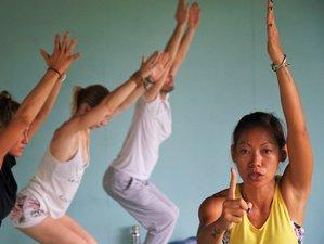 28 Days 200-Hour Hatha Based Multi-Style Yoga Teacher Training in Koh Phangan, Thailand