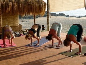 15 Days Thai Yoga Massage and RYT-200 Yoga Teacher Training in India