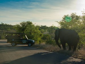 9 Day Bush to Beach Safari in South Africa, Swaziland, and Mozambique
