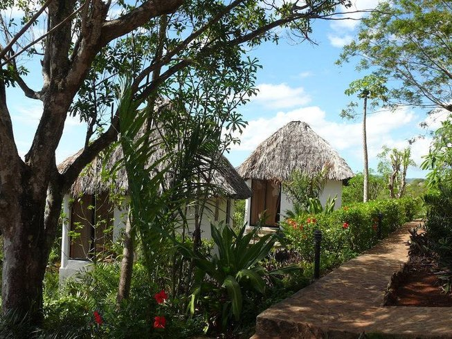 7 Days Dance Your Asana Yoga Retreat in Dominican Republic