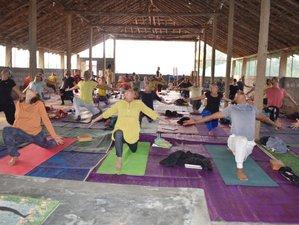 14 Days 130-Hour Yoga Nidra Chakra-Sadhna Yoga Teacher Training in Karnataka, India