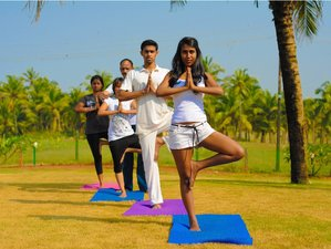 6 Days Beginner & Intermediate Yoga in India