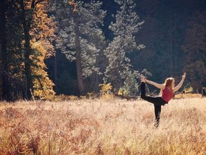 3 Days Aligning with Nature's Rhythms Ayurveda and Yoga Retreat in Yosemite National Park, USA