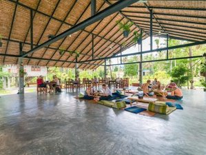 8 Day Vegan, Yoga, and Community Retreat in Koh Phangan, Surat Thani