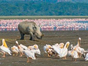 5 Days Mara, Nakuru, and Naivasha Safari in Kenya