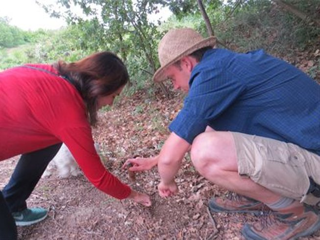 2 Days Mushroom Hunting and Culinary Vacations in France