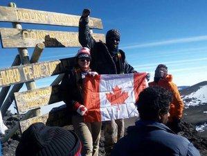 6 Days Rongai Route Hiking Safari in Mount Kilimanjaro, Tanzania