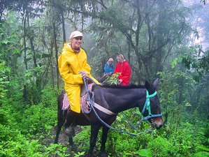 2 Day Tropical Horseback Riding Holiday in Machalilla National Park