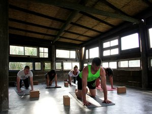 5 Day Budget Half Yoga Holiday in Colares