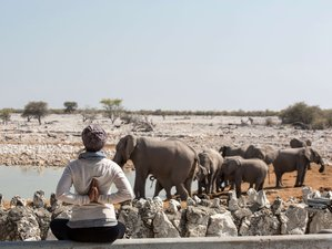 8 Day Desert, Wildlife, and Yoga Retreat in the Best Locations in Namibia