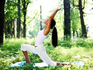 3 Tage Vegan Kochen, Meditation und Yoga Urlaub Kalifornien