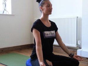 3 Day Personalized Yoga, Pranayama, and Meditation Retreat in Suffolk