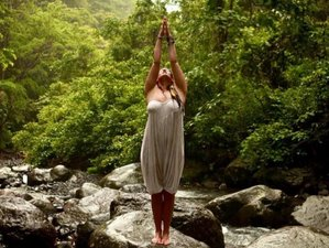 24 Days 200-Hour Infinite Source Teacher Training in Costa Rica