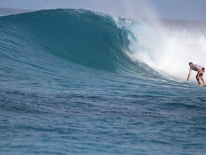 8 Tage Surfcamp in Thimarafushi, Malediven