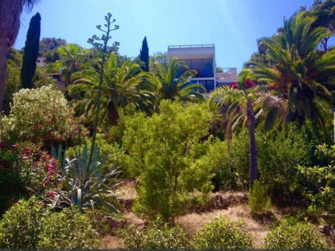 6 Days Strength, Beauty, and Harmony After 40 Yoga Retreat in Mallorca, Spain
