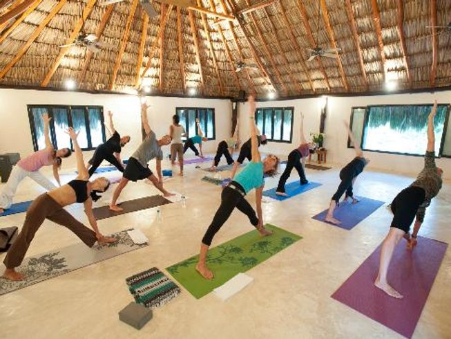3 días retiro de yoga y tour de delfines en Bali, Indonesia