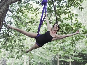 8 Days Aerial Yoga Teacher Training Costa Rica
