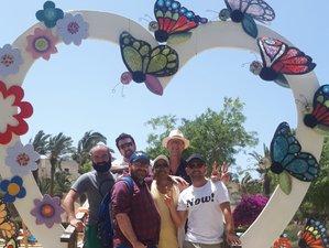 7 Days Brotherhood Yoga, Qigong, and Mindfulness Retreat in Gozo, Malta
