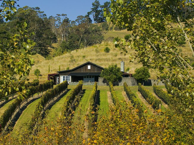 8 Days Cooking Holidays and Wine Tour in New Zealand